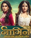 Naagin 4 Episode 25